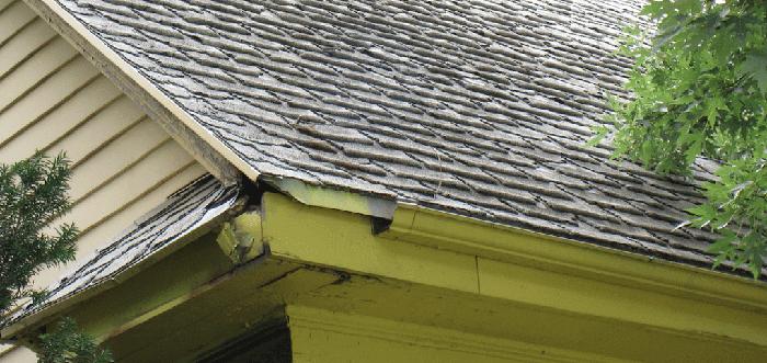shingles on roof lifespan