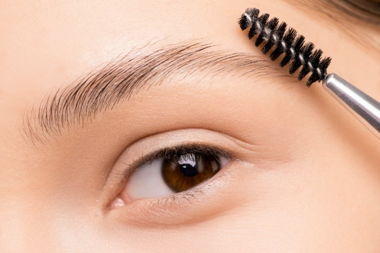 how to grow eyebrows back