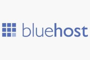 Read more about the article What is Bluehost? What Does BlueHost Offer?