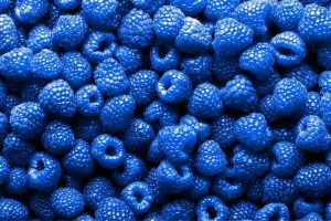 Read more about the article Blue Raspberries – Are They Real?