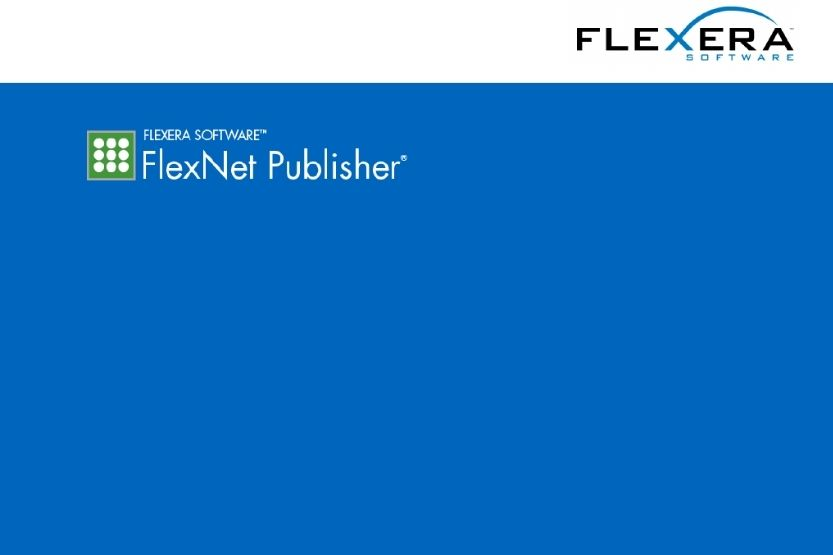 FlexNet Licensing Service [What Is It and How Does It Work?]